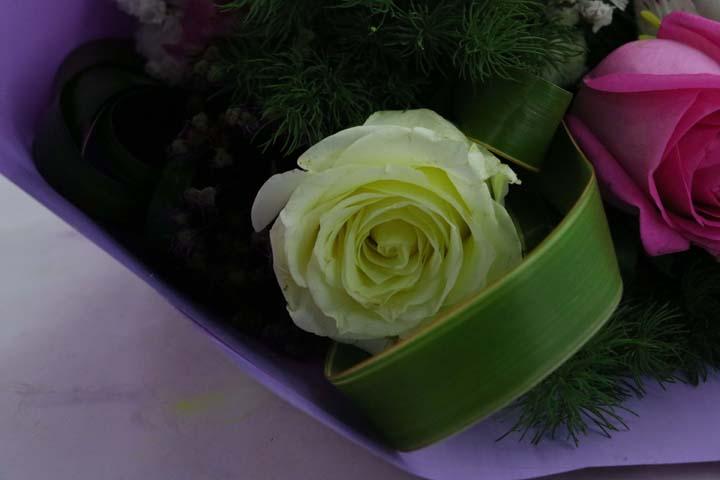 مناطق مناسب برای گلفروشی/Suitable areas for floristry