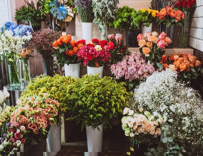 تاسیس گلفروشی/Establishment of a florist