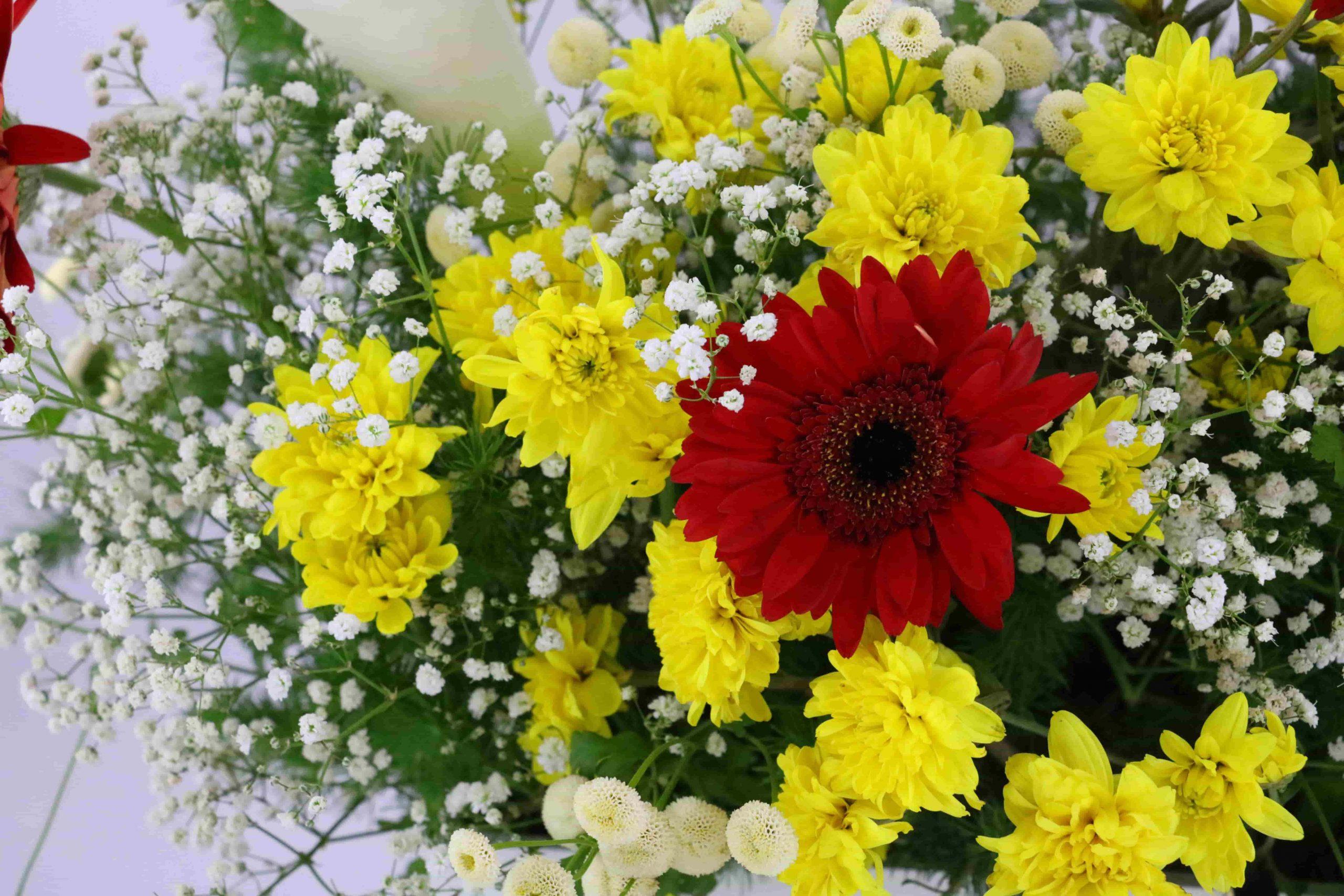 متن ادبی درباره گل